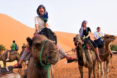 تور  مراکش باشکوه