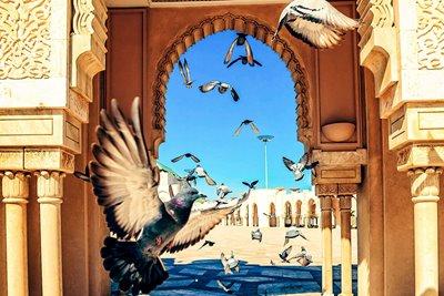 تور مراکش (8روزه)