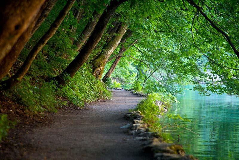 پارک ملی زاگرب