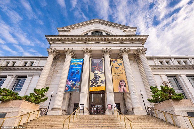 موزه اسمیت سونیا