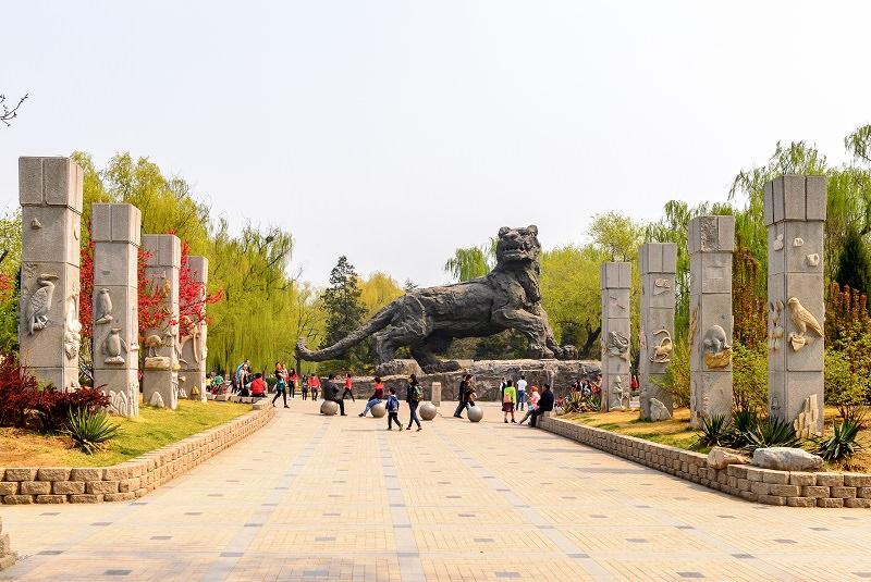 1cff1a7c bd79 4447 a61a eab4dbe6e2bf - چین پرجمعیت ترین کشور جهان