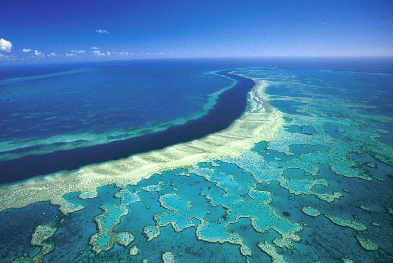 صخره مرجانی استرالیا
