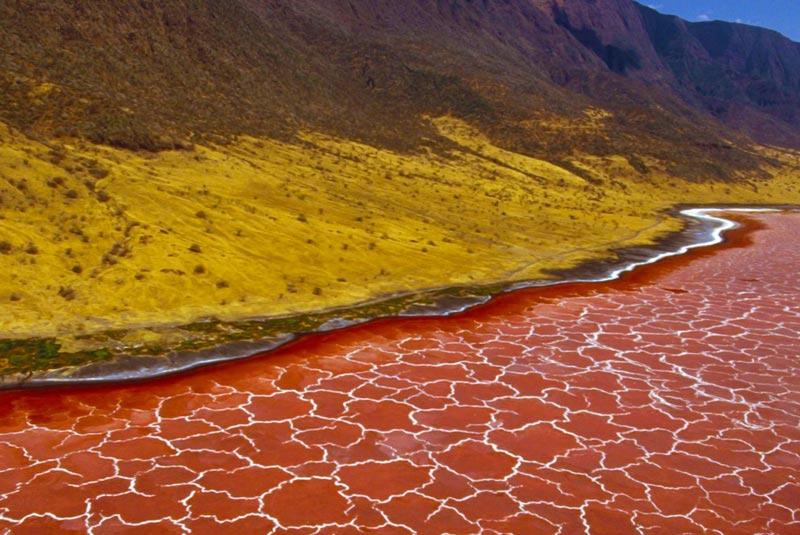 دریاچه ناترون،تانزانیا