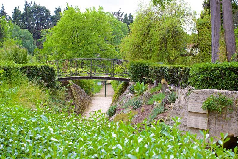 باغ گیاه شناسی مون پلیه
