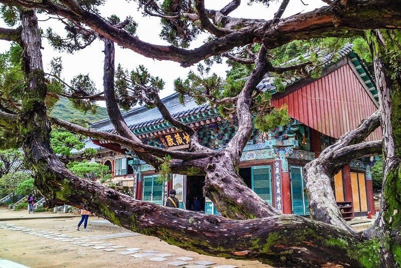 معبد بئومئوسا در بوسان (کره جنوبی)