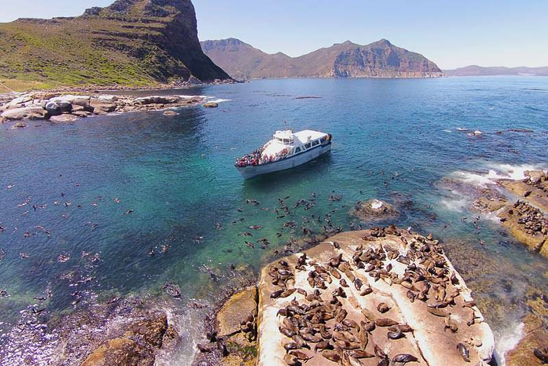 سیمونز تاون در آفریقای جنوبی