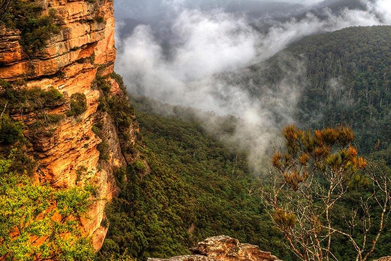 کوهستان آبی سیدنی