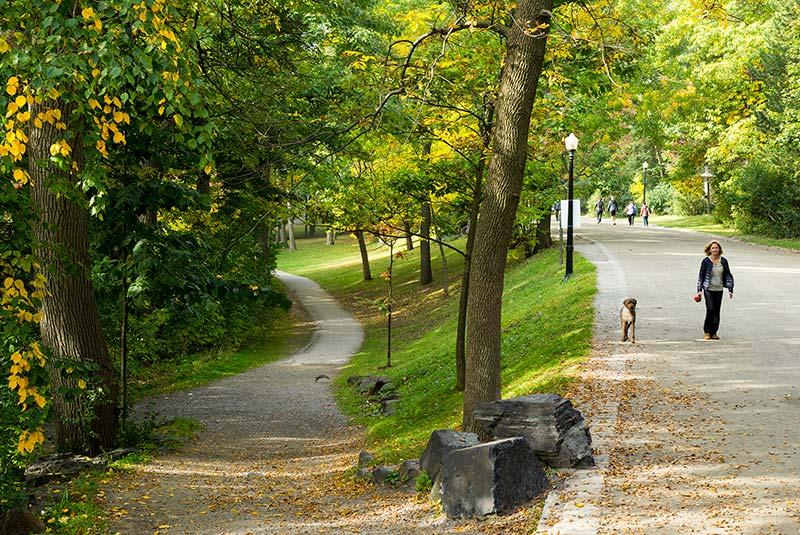 پارک مونت رویال مونترال