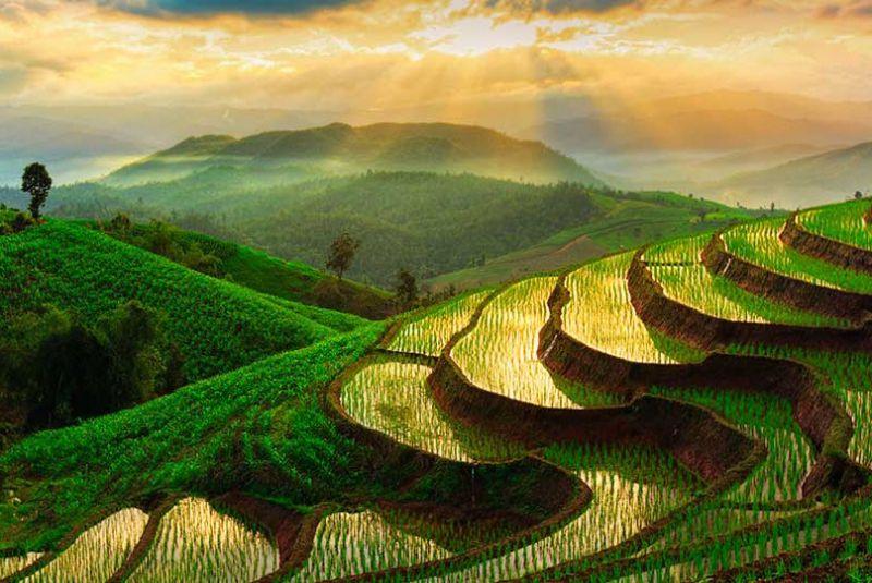 منطقه پای تایلند