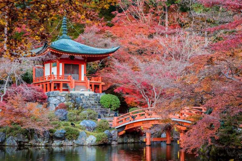 باغهای کیوتو، ژاپن