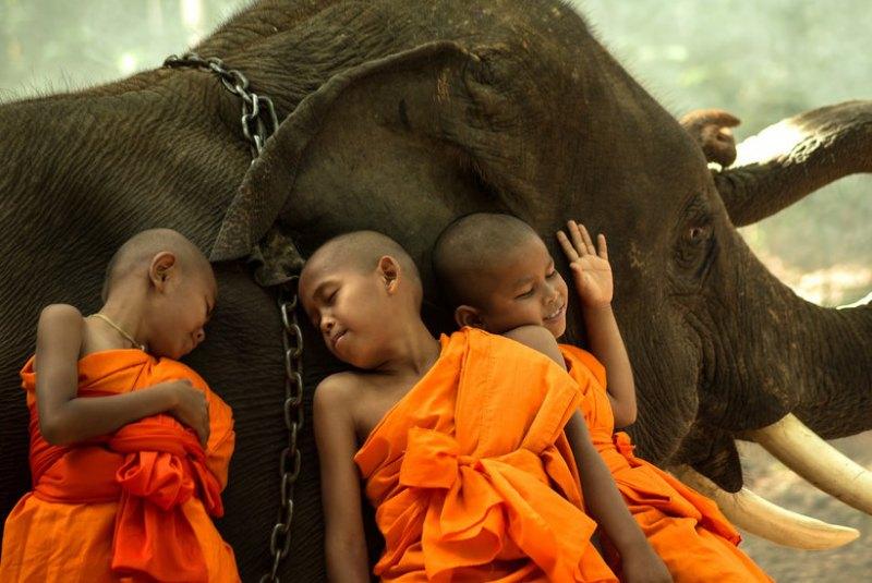 راهب های تایلندی