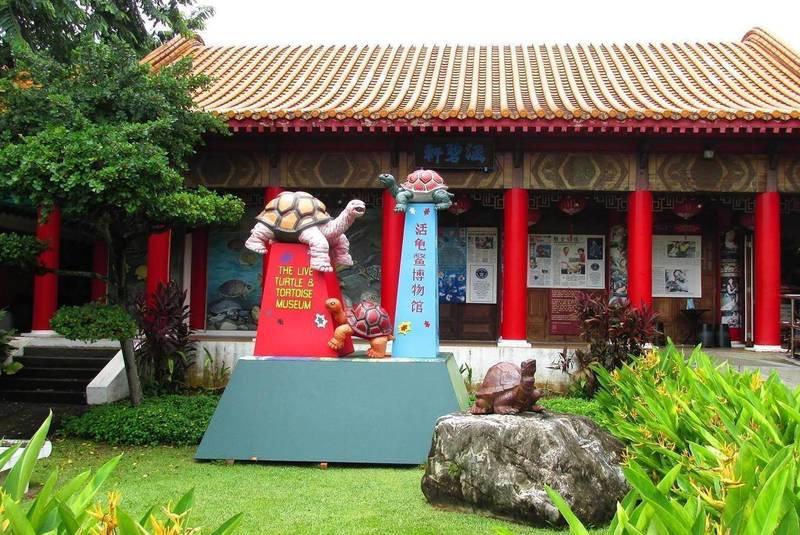 موزه لاک پشت ها سنگاپور