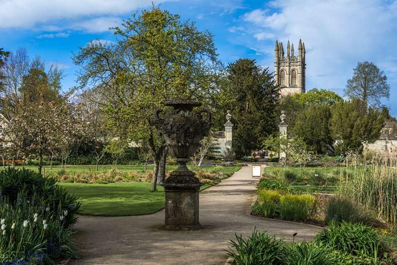 باغ گیاه شناسی دانشگاه آکسفورد