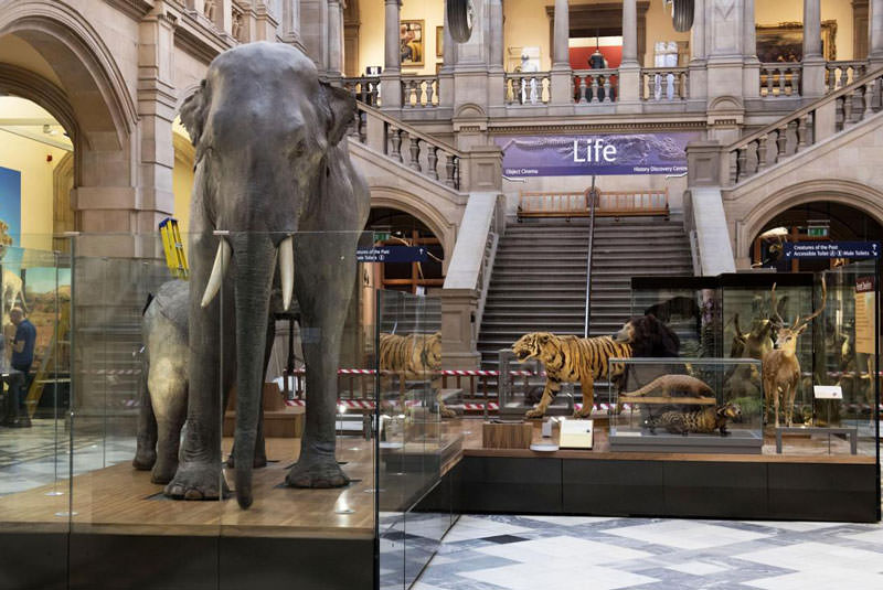 موزه ملی اسکاتلند