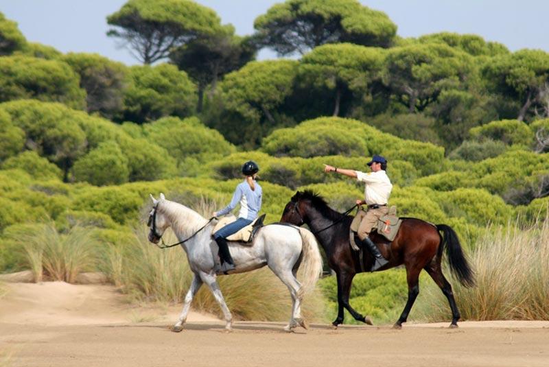 پارک ملی دونیانا در اسپانیا