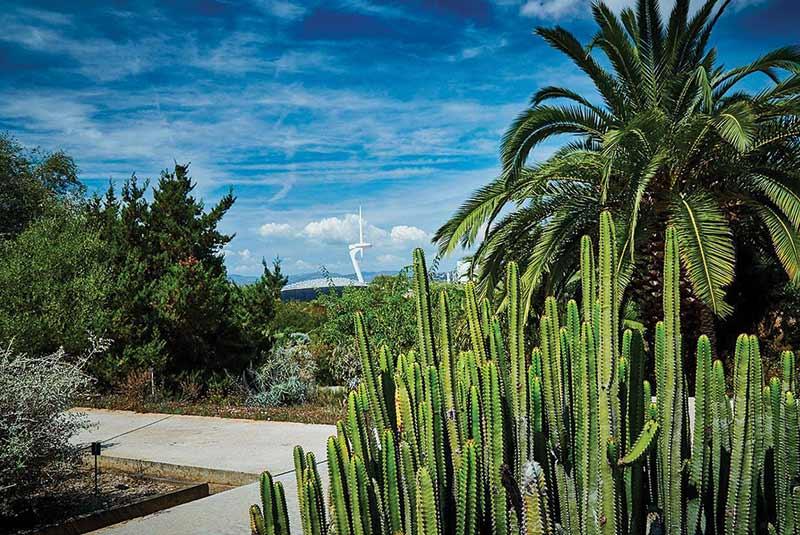 باغ گیاه شناسی بارسلون