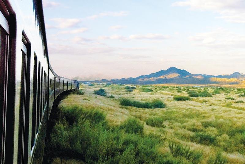 سافاری نامیبیا با رُووس رِیل، آفریقای جنوبی