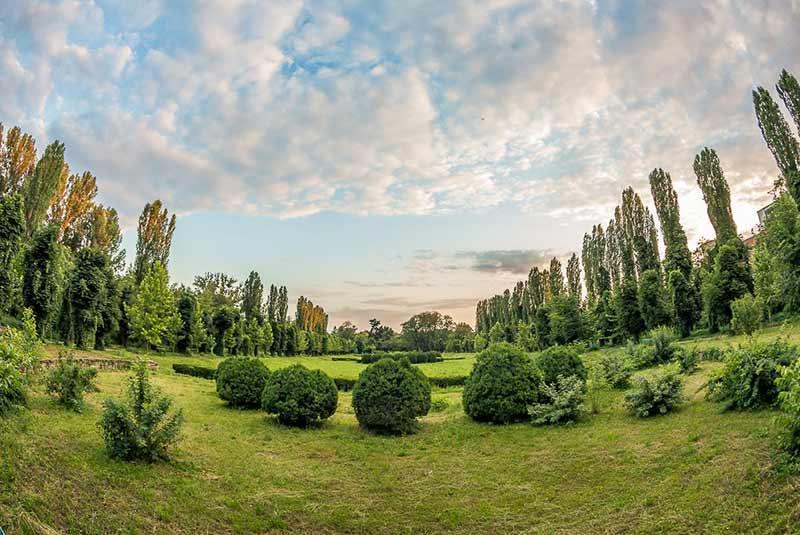 باغ گیاه شناسی بخارست