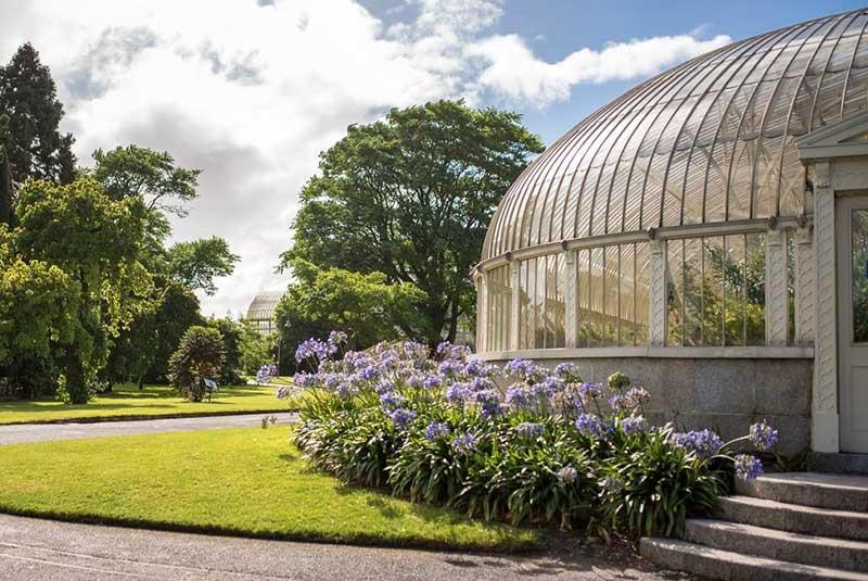 باغ ملی گیاه شناسی دوبلین