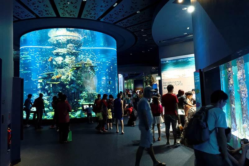 سی آکواریوم سنگاپور