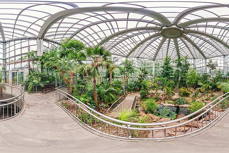 باغ گیاه شناسی پالمن در فرانکفورت