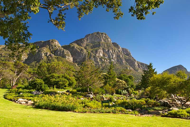 باغ گیاه شناسی کریستین بوش کیپ تاون