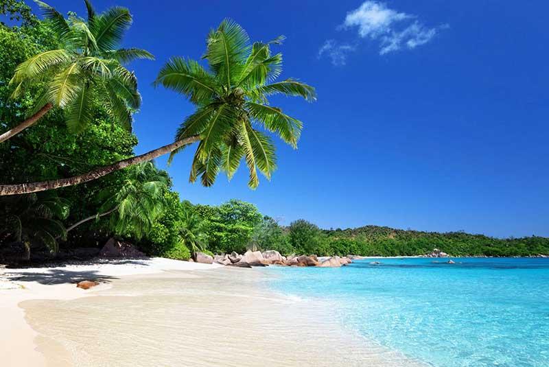 ساحل انسه لازیو در سیشل