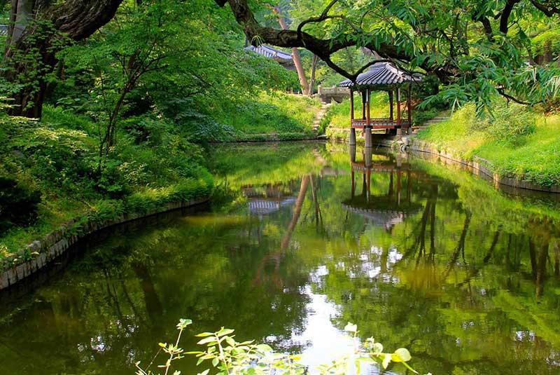 باغ مخفی در کاخ چانگ دیوک گونگ سئول