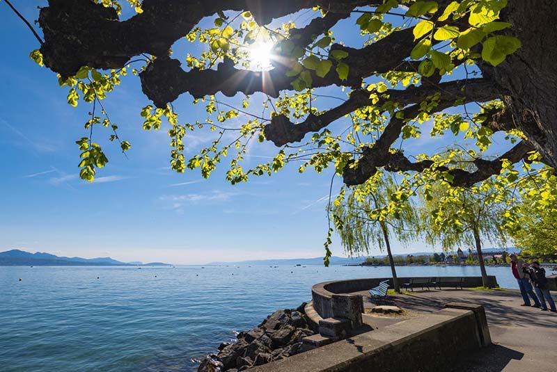 دریاچه ژنو و تفرجگاه اوشی در لوزان