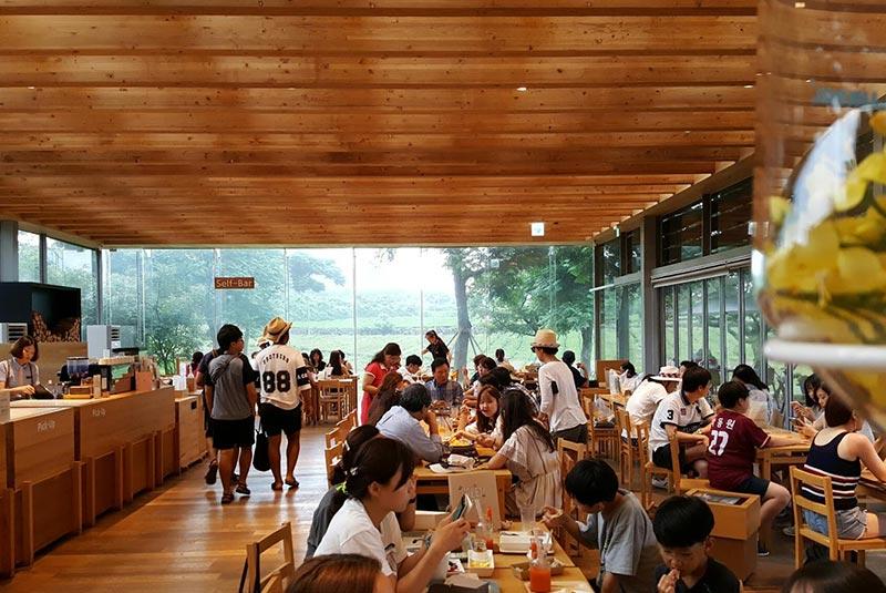کافه های جیجو