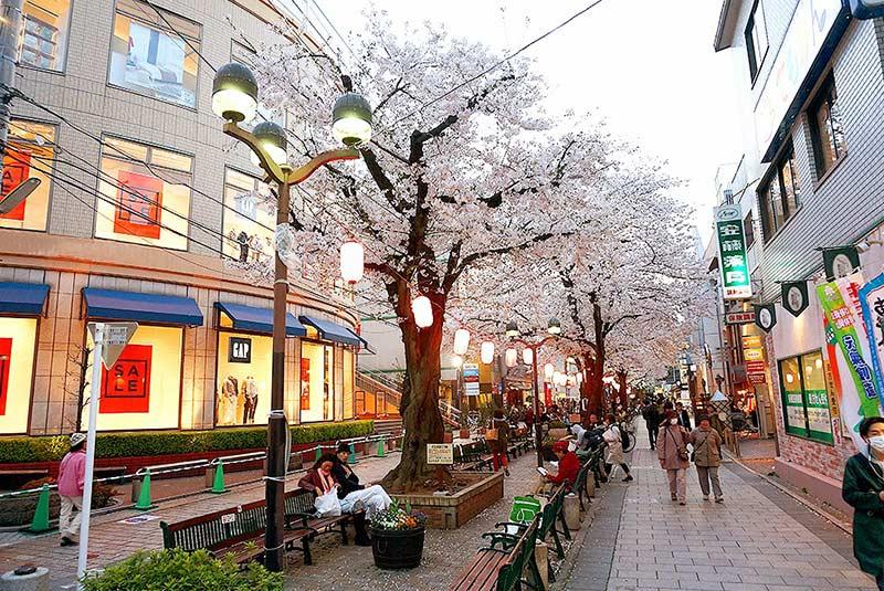 مراکز خرید ارزان توکیو