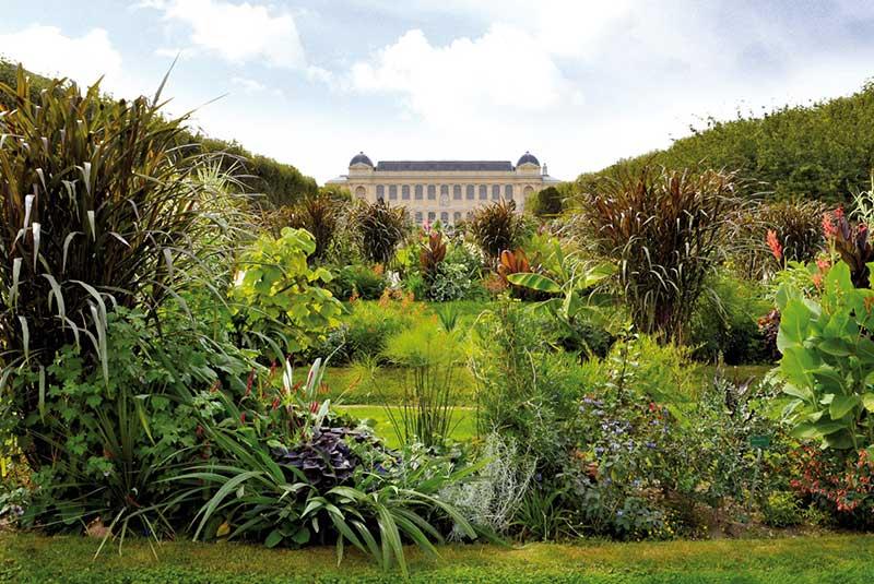 باغ گیاهان پاریس