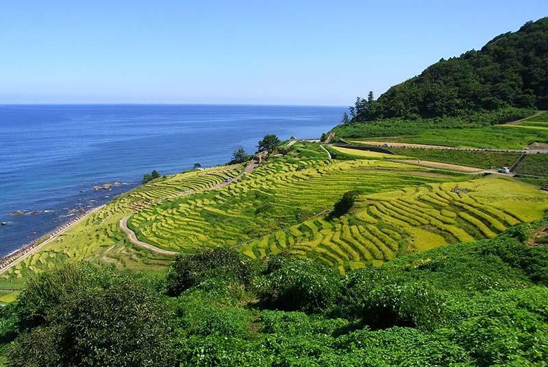 شبه جزیره نوتو در ژاپن