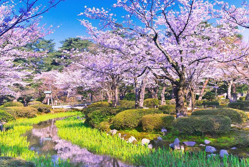 باغ کنروکوئن در ژاپن
