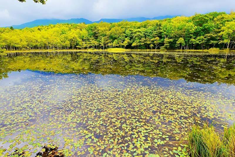 پارک های ملی ژاپن