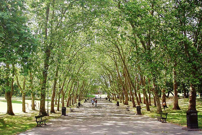 پارک کریستال پالاس در لندن