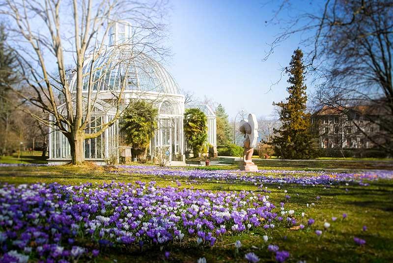 باغ انگلیسی در ژنو