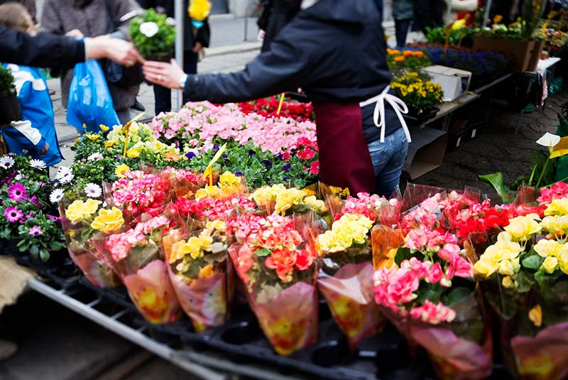 بازار گل فلورانس