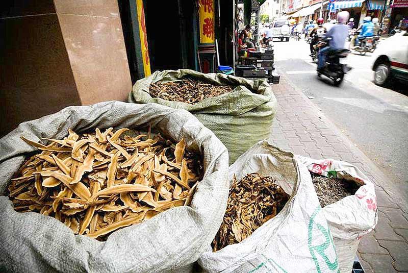 خیابان لان اونگ هانوی