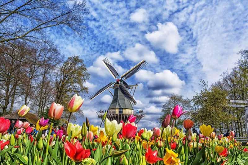 جاهای دیدنی هلند