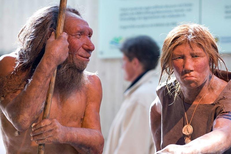 موزه نئاندرتال