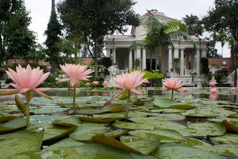 باغ رویاها نپال
