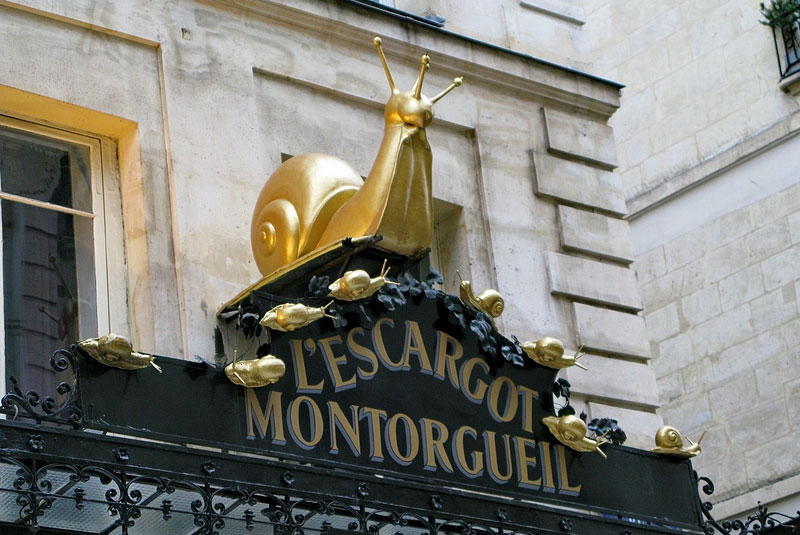 شکم گردی در خیابان مونتورگوی پاریس