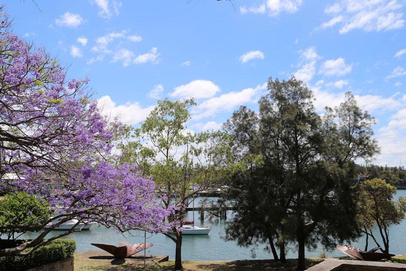بالمین سیدنی