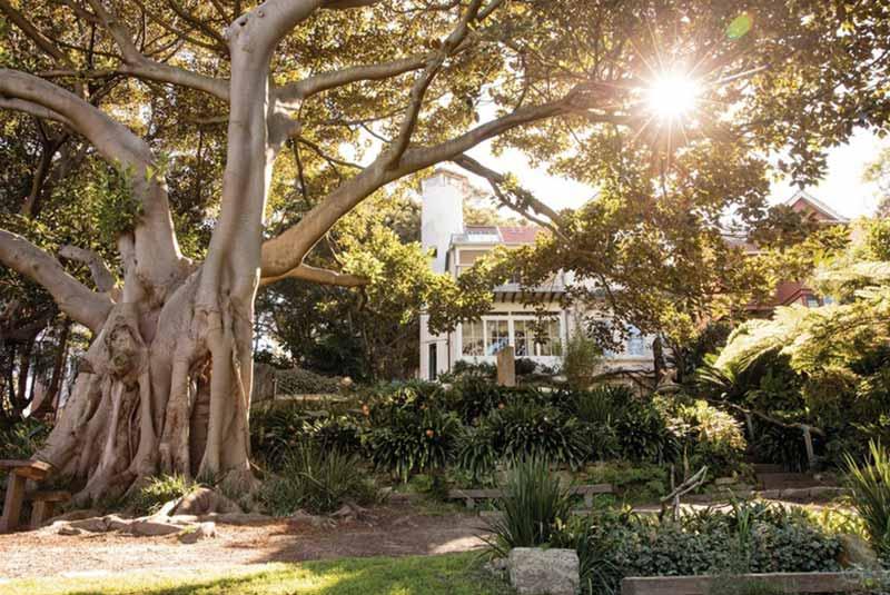 باغ سیدنی