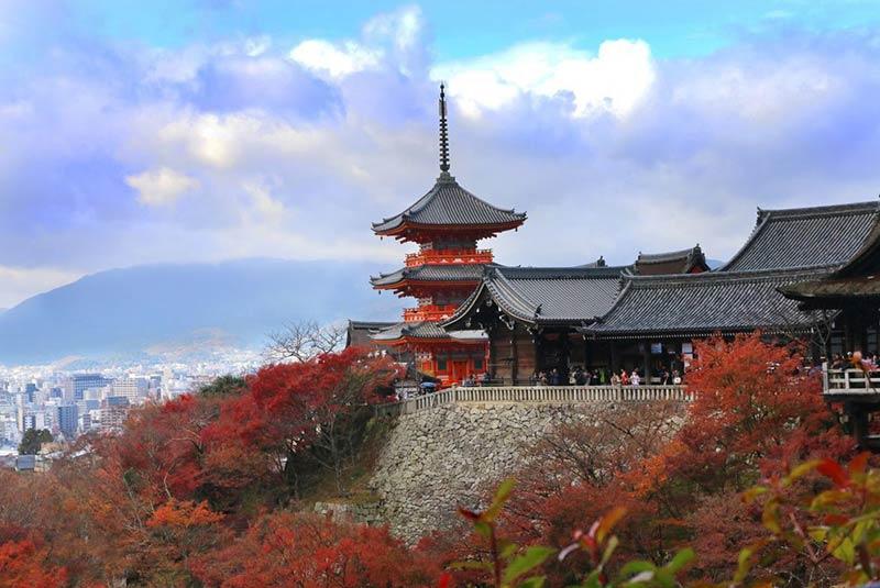 سفر انفرادی کیوتو