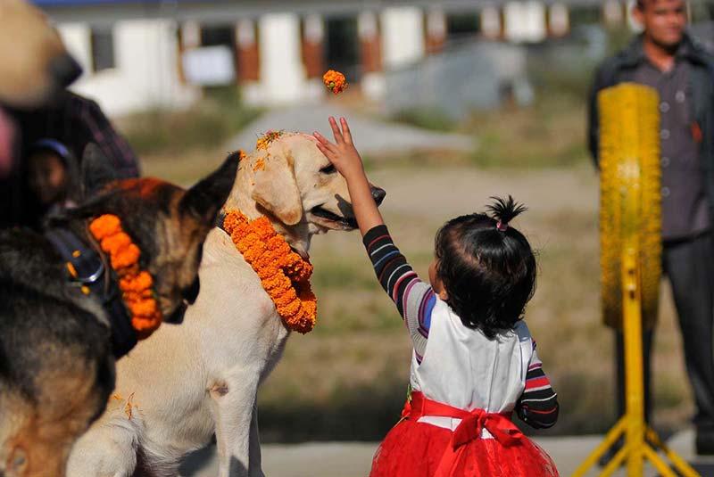 رسم تیهار نپال