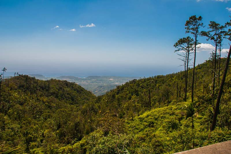 کوه های سیرا ماسترا کوبا