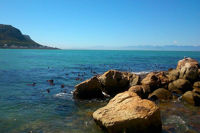 سواحل زیبای کیپ تاون