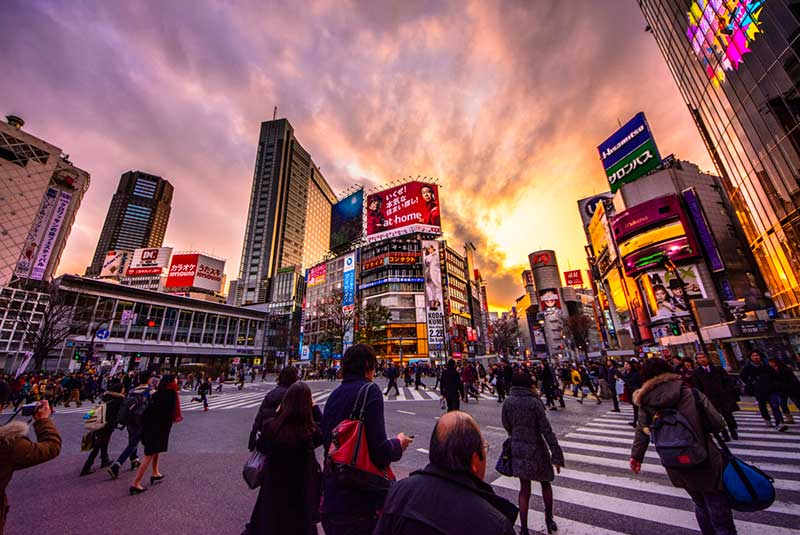 شیبویا توکیو